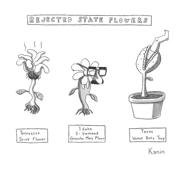 Flower Drawing - Title: Rejected State Flowers: Tennessee by Zachary Kanin