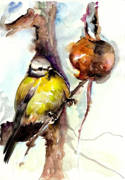 Titmouse Painting - Titmouse Eating The Apple - Original Watercolor by Tiberiu Soos