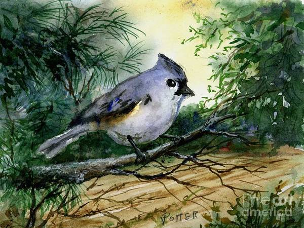 Titmouse Painting - Titmouse by Virginia Potter
