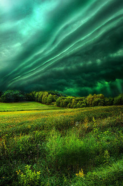 Summer Storm Photograph - Take My Hand by Phil Koch