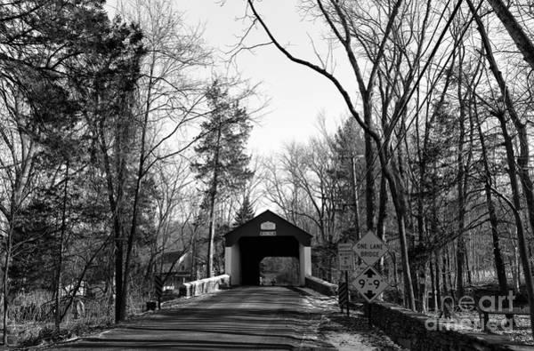 Photograph - To Cabin Run Mono by John Rizzuto