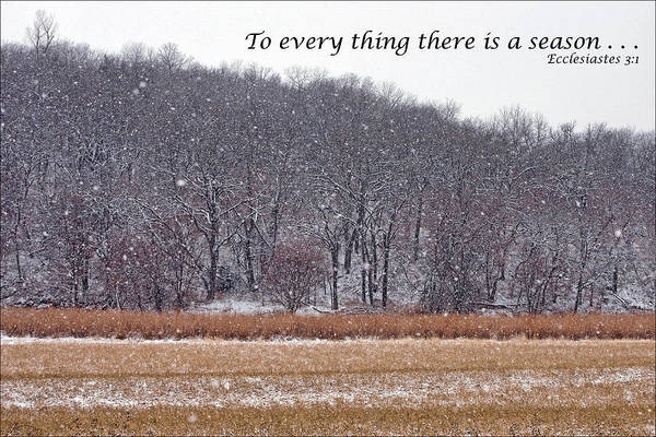 Bible Quotes Photograph - To Every Thing There Is A Season by Nikolyn McDonald