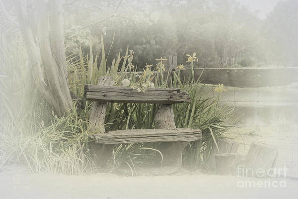 Photograph - To Sit And Reflect by Elaine Teague