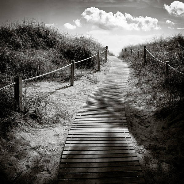 Mono Photograph - To The Beach by Dave Bowman