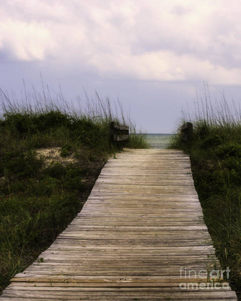 Photograph - To The Beach by David Waldrop