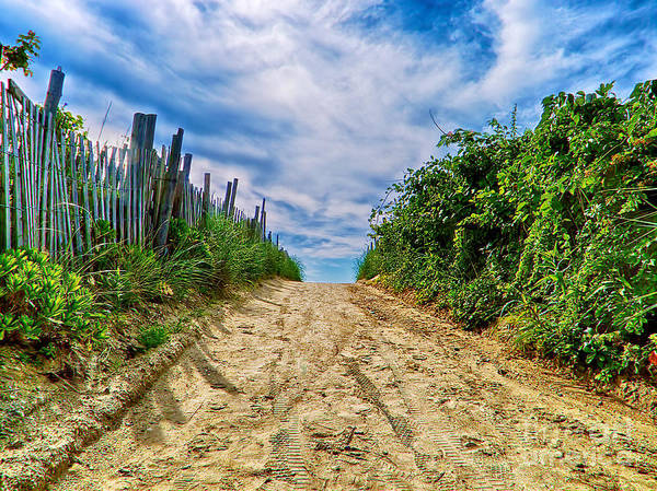 Photograph - To The Beach by Mark Miller