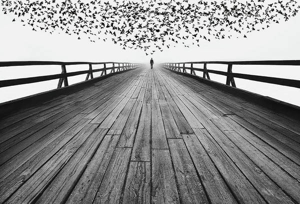 Wooden Bridge Photograph - To The End by Mandru Cantemir