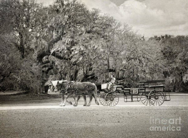 Wagon Digital Art - To The Stables by Claudia Kuhn
