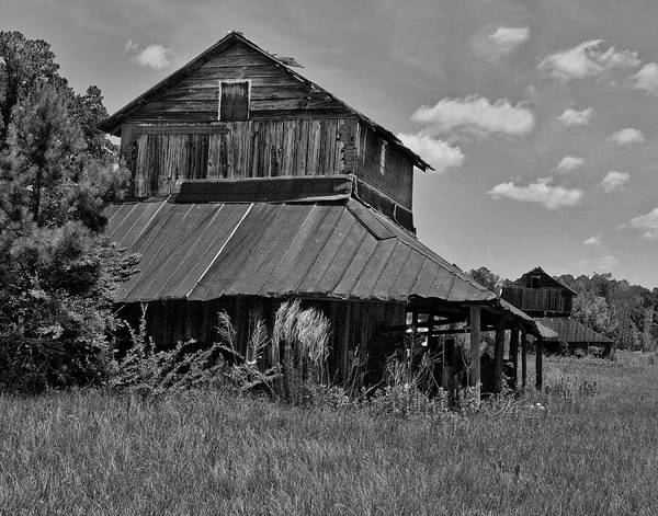 Sandra Anderson Wall Art - Photograph - Tobacco Barns With Clouds by Sandra Anderson
