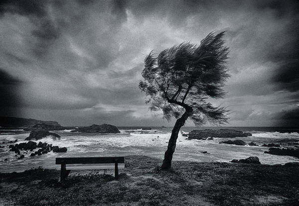 Desolate Photograph - Today No One by Mikel Lastra