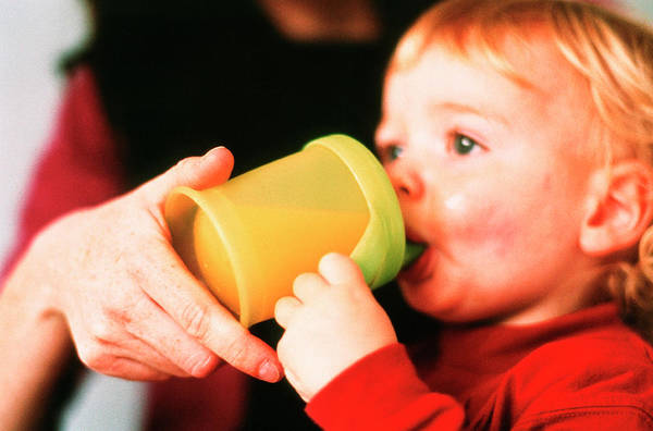 Wall Art - Photograph - Toddler Drinking by Sue Prideaux/science Photo Library