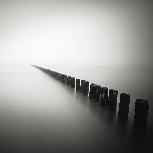 Wall Art - Photograph - Together Alone by Christophe Staelens