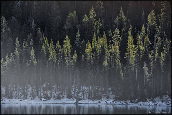 Photograph - Toiga Lake by Erika Fawcett