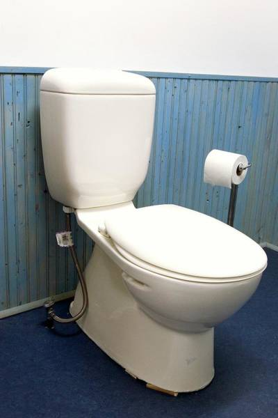 Wall Art - Photograph - Toilet by Jim West