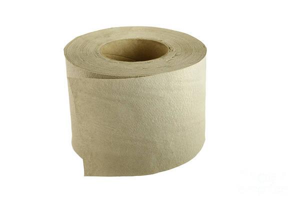 Toilet Paper Photograph - Toilet Paper by Michal Boubin
