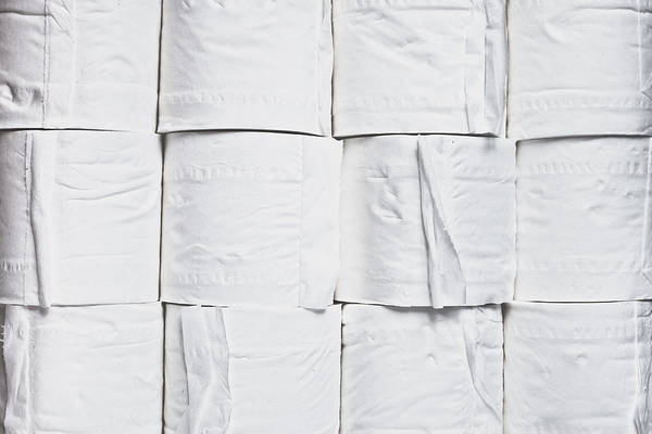 Toilet Photograph - Toilet Paper by Tom Gowanlock