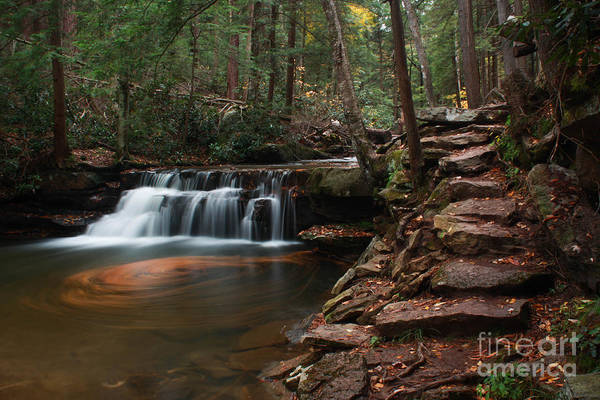 Swallow Falls State Park Wall Art - Photograph - Tolliver Falls by Gena Royce