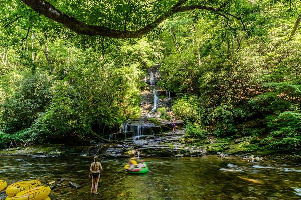Photograph - Tom Branch Falls by Randy Scherkenbach
