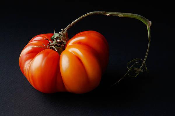 Furon Photograph - Tomato by Daniel Furon