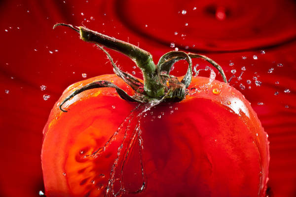 Wall Art - Photograph - Tomato Freshsplash 2 by Steve Gadomski