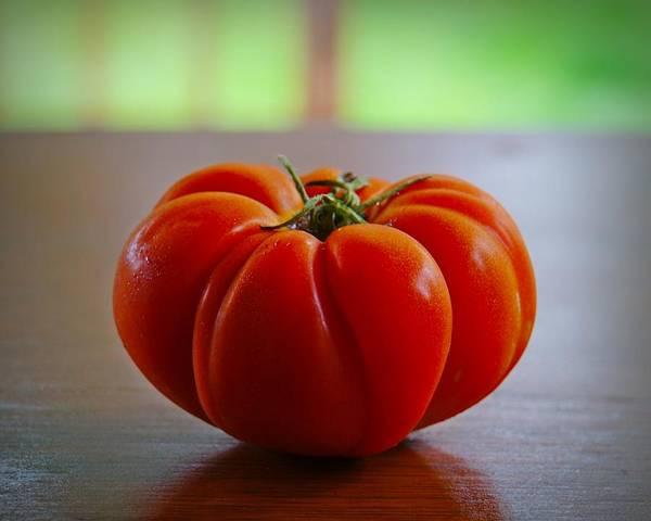 Photograph - Tomato Tomahto by Patricia Strand