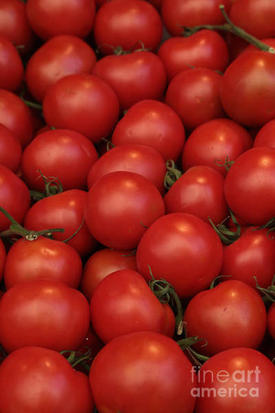 Photograph - Tomatoes by Carol Groenen