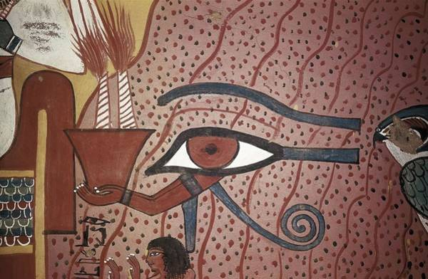 Wall Art - Photograph - Tomb Of Pashed. 1306 -1290 Bc. Egypt by Everett
