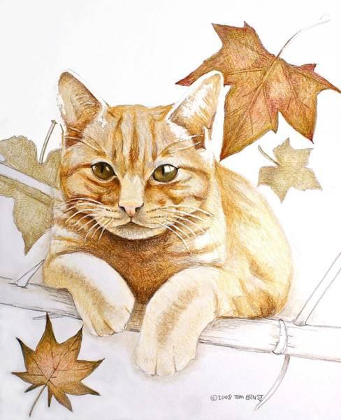 Drawing - Tomcat by Tim Ernst