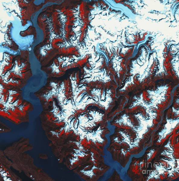 Photograph - Tongass National Forest by Spot Image