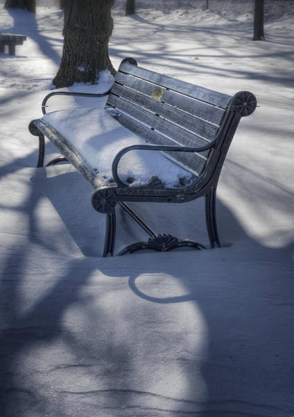 Park Bench Photograph - Too Cold To Contemplate by Joan Carroll