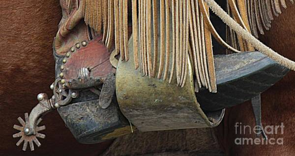 Photograph - Tools Of The Trade by Ann E Robson