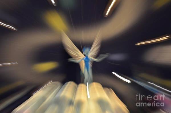 Photograph - Tooth Fairy by Randy J Heath