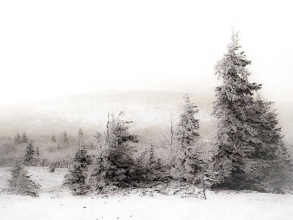 West Virginia Photograph - Top Of Canaan In Winter by Shane Holsclaw