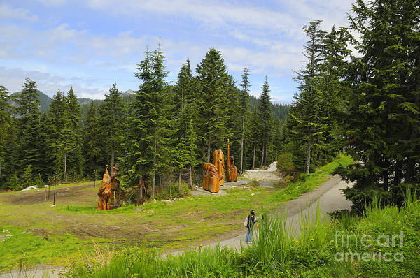 Photograph - Top Of Grouse Mountain by Brenda Kean
