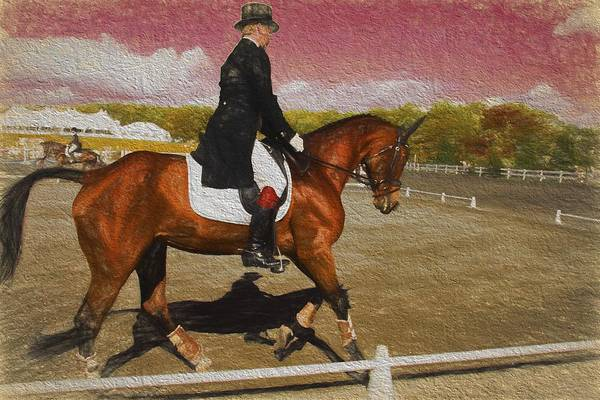 Fairhill Photograph - Tophat Warmup by Alice Gipson