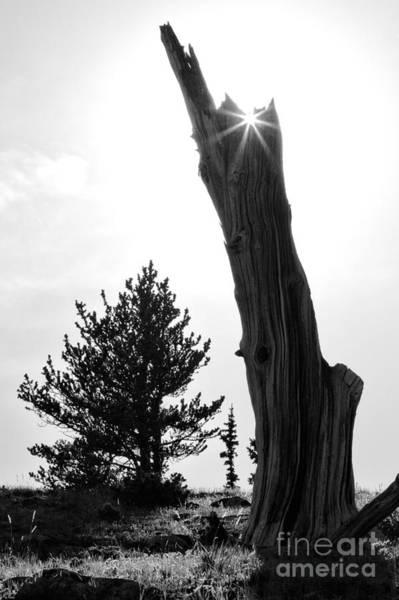 Photograph - Torchlight by Jim Garrison