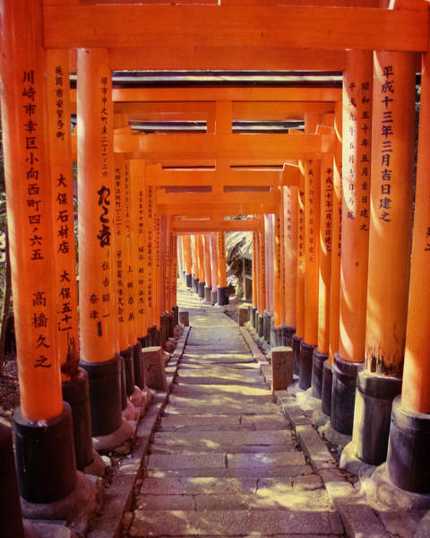 Architectural Details Photograph - Torii Gates At The Fushimi Inari Shrine by Juli Scalzi