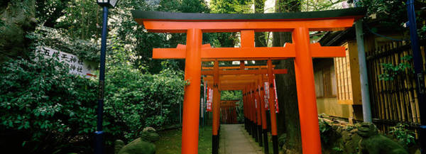 Lamppost Photograph - Torii Gates In A Park, Ueno Park by Panoramic Images