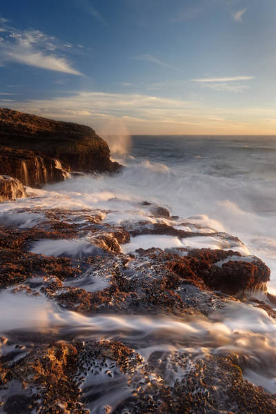 Wall Art - Photograph - Panther Beach - Torment  by Francesco Emanuele Carucci