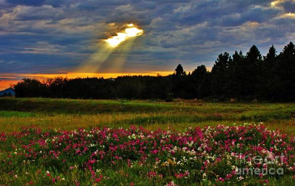 Photograph - Torn Sky by Michael Cross