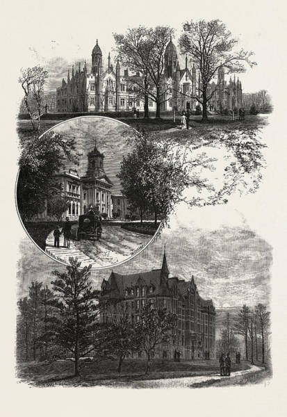 Toronto Drawing - Toronto And Vicinity, Educational Institutions by Canadian School