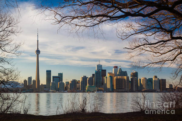 Cn Tower Wall Art - Photograph - Toronto Through The Trees by Inge Johnsson