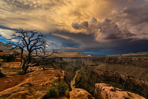 Plateau Wall Art - Photograph - Toroweap Storm by Guy Schmickle