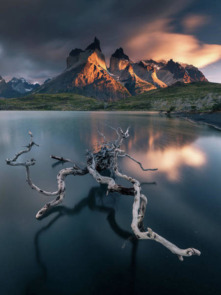 Wall Art - Photograph - Torres Del Paine by Karol Nienartowicz