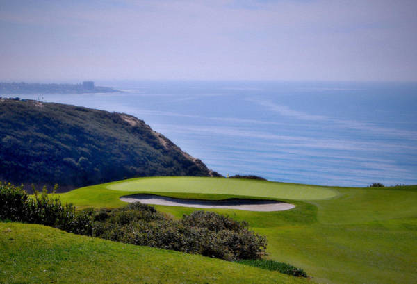Torrey Photograph - Torrey Pines South No. 3 by See My  Photos