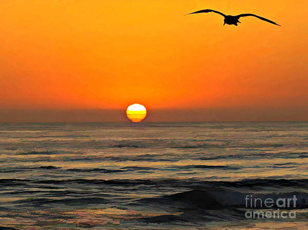 Photograph - Torrey Pines Sunset W Seagull by Sharon Tate Soberon