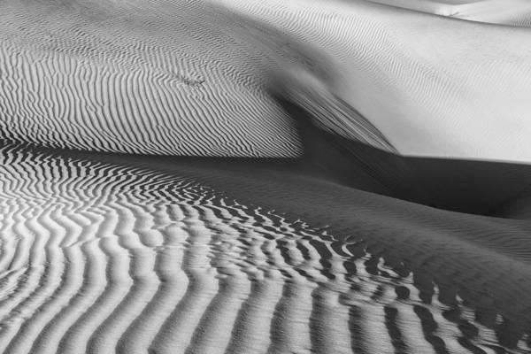 Photograph - Torso by Jon Glaser