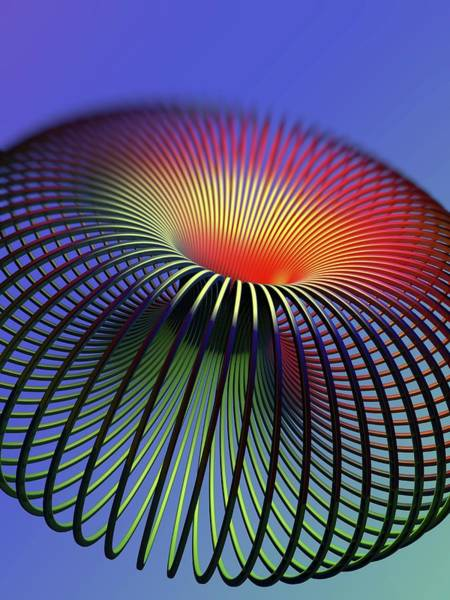Wireframe Photograph - Torus by Alfred Pasieka/science Photo Library