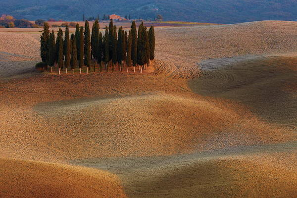 Wall Art - Photograph - Toscana by Vadim Balakin