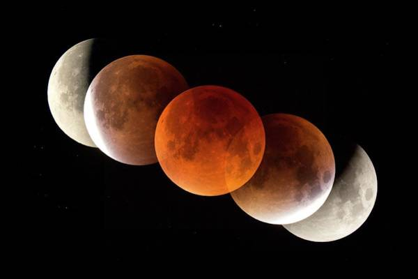 Blood Moon Wall Art - Photograph - Total Lunar Eclipse 2015 by Dr Juerg Alean/science Photo Library